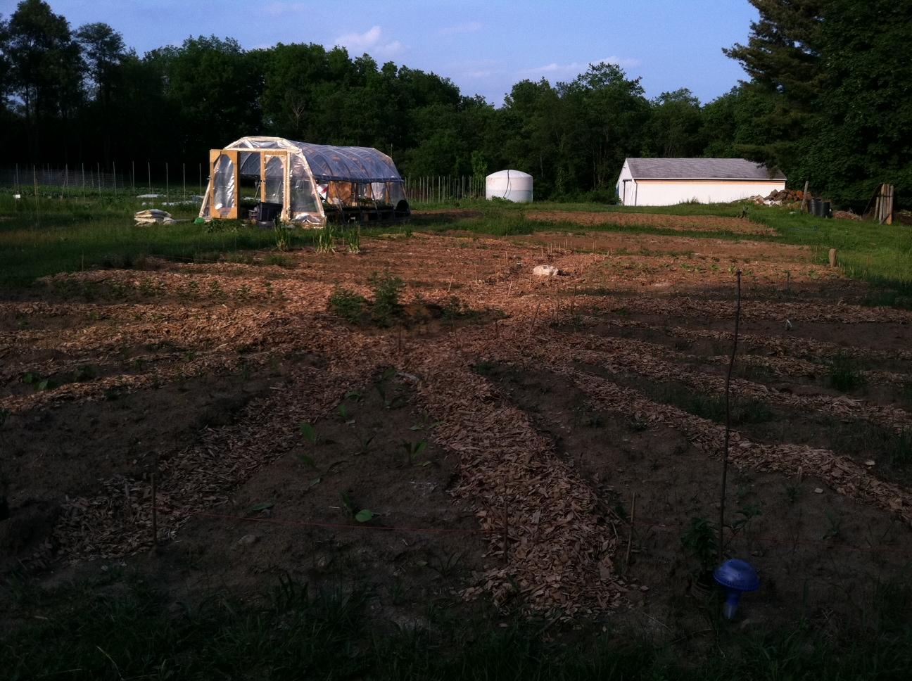 Farm To Table Yoga Dinner June 18th Growing Heart Farm