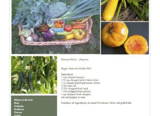 Fresh Vegetables Pawling NY
