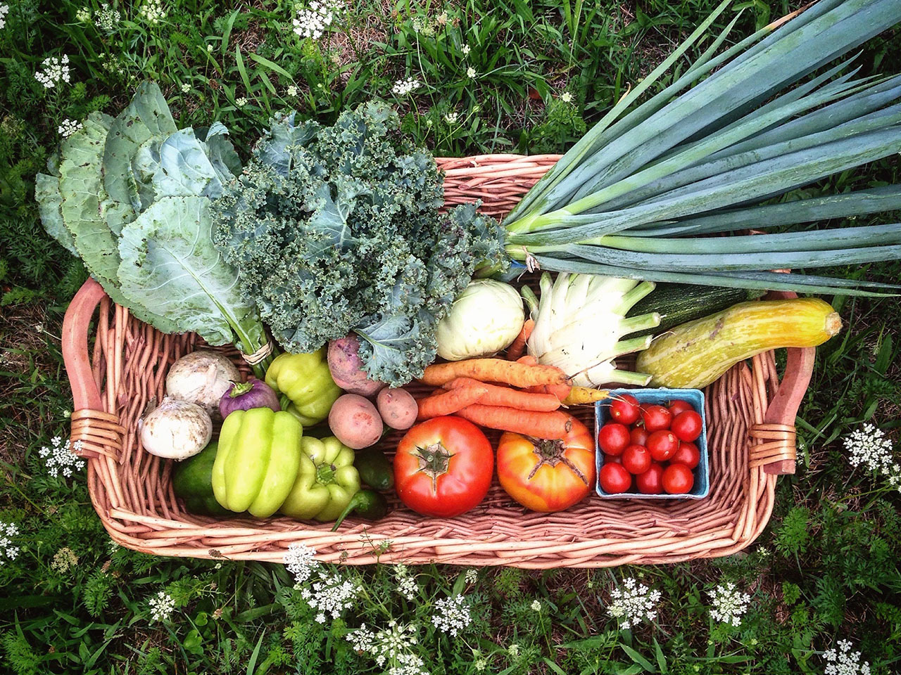 Fresh Vegetables - Farm Stand